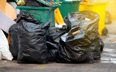 Rejestracja w BDO: firmy mają kłopot ze śmieciami. Będzie taryfa ulgowa