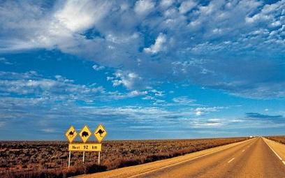 Filip Rutkowski chce dojechać do Australii autostopem