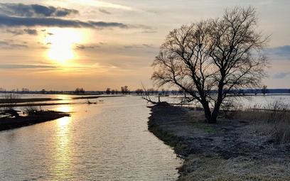 Polski Ład: jak trzeba zmienić prawo o parkach narodowych?