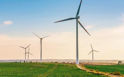 10 proc. energii elektrycznej w Polsce powstało w ubiegłym roku w farmach wiatrowych. Potencjał jest