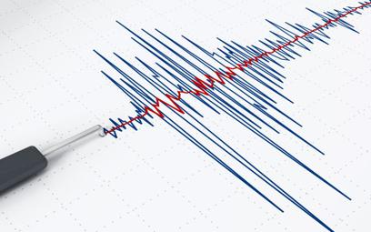 Czujnik trzęsienia ziemi w smartfonach
