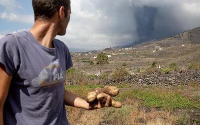 W efekcie erupcji wulkanu zniszczone zostały uprawy warzyw i owoców