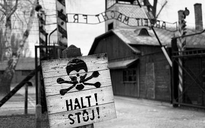 Sondaż: Czy Polacy są współwinni Holokaustu