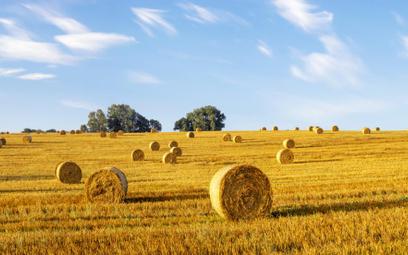 Sąd Najwyższy: zakaz sprzedaży ziemi rolnej nie dotyczy gruntów nabytych na licytacji