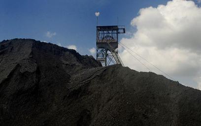 Konkurs: Ile wiemy o węglu?