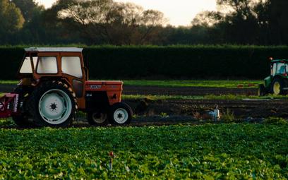 Szwajcaria zdelegalizuje pestycydy? Kraj podzielony jak nigdy