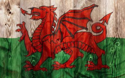 Wielka Brytania: Atak za mówienie po walijsku w Walii