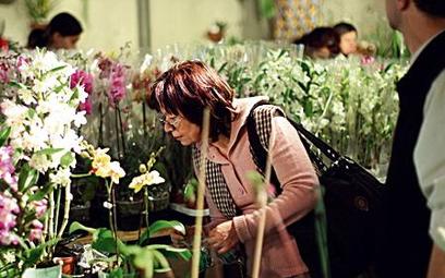 Orchidee zadziwiały różnorodnością gatunków