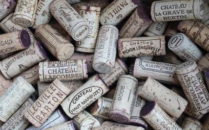 6 nowych szczepów w winach z Bordeaux. Powód? Zmiany klimatu