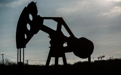 OPEC: równowaga  na rynku w 2016 r.
