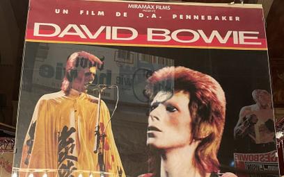 Kosmiczny Ziggy Stardust, jedno z wcieleń Davida Bowiego