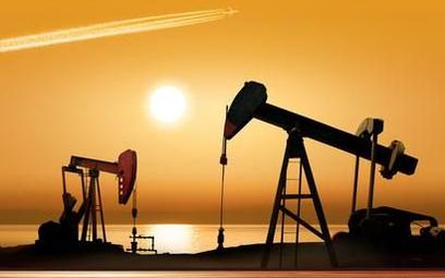 Ropa najdroższa od ponad dwóch lat
