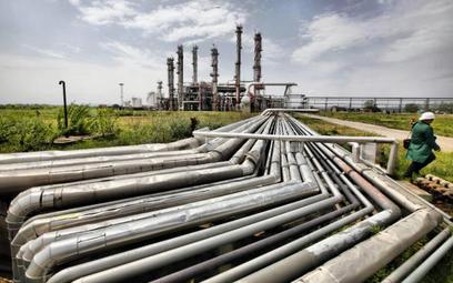 Rząd z wielką nadzieją na gaz z łupków