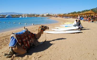Egipt myśli, jak pomóc branży turystycznej. Może tańsze bilety?