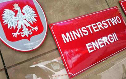 Kolejny wiceminister Energii