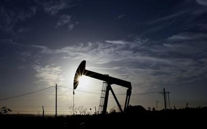 Greenspan: ropa będzie jeszcze tańsza
