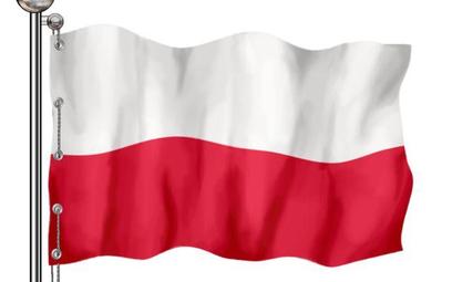 Cudzoziemiec łatwiej uzyska certyfikat z języka polskiego