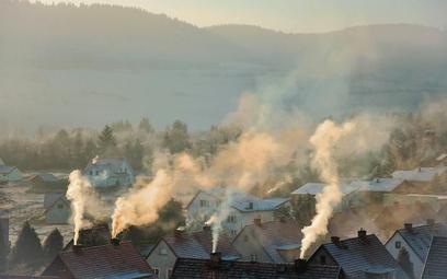 """Na walkę ze smogiem wydajemy coraz więcej. Najbardziej """"smogotwórcze"""" są domowe piece"""