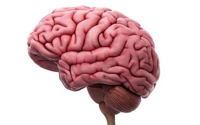 Jak wygrać ze śmiercią mózgu? Pomoże lekarz z Indii?