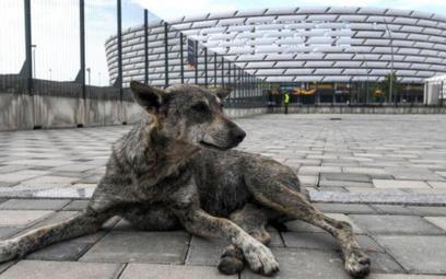 Stadion Olimpijski w Baku w środę będzie gościł finał Ligi Europy, a w przyszłym roku odbędą się na