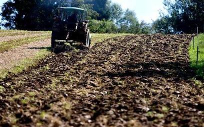 Pod względem wydajności pracy w rolnictwie Polska jest w ogonie UE