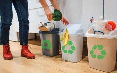 Mandat za brak deklaracji śmieciowej