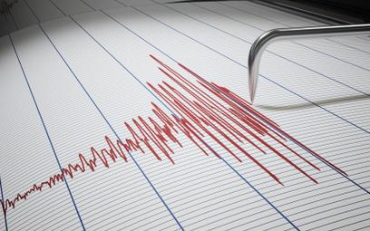Potężne trzęsienie ziemi. Ewakuacja po groźbie tsunami