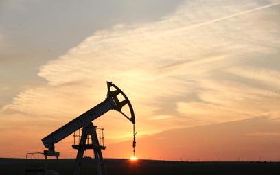 Baryłka ropy naftowej może kosztować nawet 20 dolarów – przekonuje Nariman Behravesh, główny ekonomi