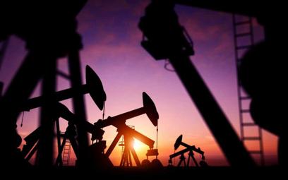 Czarne złoto może potanieć. Cena ropy zależy od G20