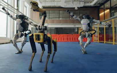 Roboty umieją coraz więcej. Ten z Bostonu zmieni logistykę