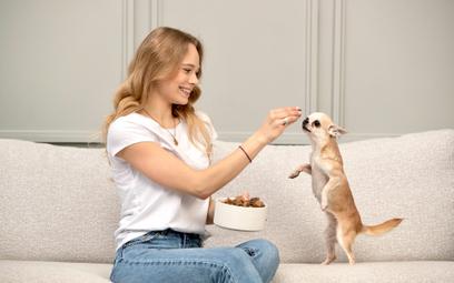 Agota Jakutyte założyła startup Zenoo doświadczona ciężką chorobą swojego psa. Teraz liczy  na ekspa