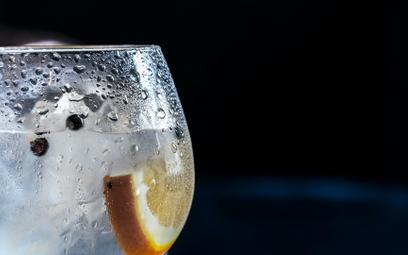Idą nowe czasy: znany angielski gin w wersji bezalkoholowej