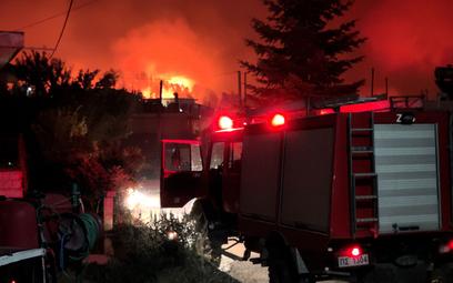 Grecja: Setki osób uciekły przed pożarami na wyspie Eubea