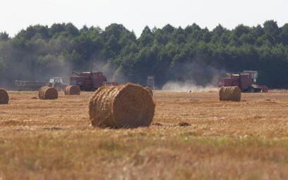 Rolnicy chętnie inwestują w ziemię