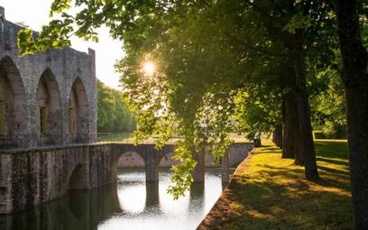 Fot: Chateau de Farcheville/ Airbnb