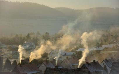 """Smog przygniótł rząd. Mizerne efekty """"Czystego powietrza"""""""
