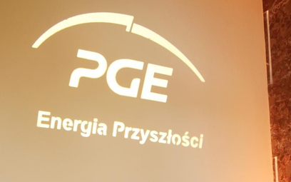 Członek Greenpeace kandyduje na prezesa PGE