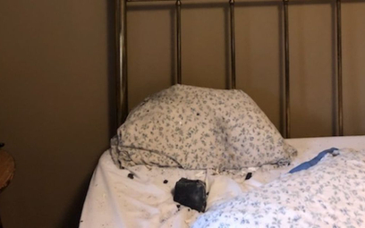 Meteoryt, który spadł na łóżko Ruth Hamilton