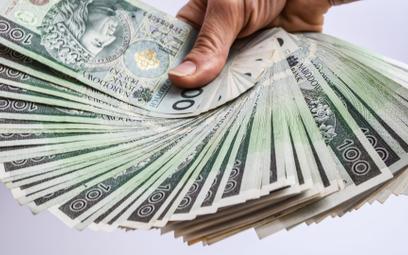 Pożyczki korzystają z ożywienia