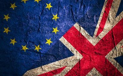 Wielka Brytania: 800 tys. osób chce referendum ws. Brexitu