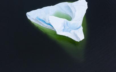 Grenlandia straciła 11 miliardów ton lodu. W jeden dzień
