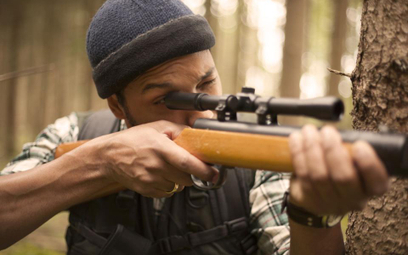 Myśliwy nie poniósł kary za zastrzelenie jelenia szlachetnego