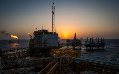 """OPEC+ czeka na """"czarne łabędzie"""""""