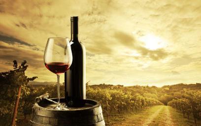 Winnice ruszyły po zyski zgronowych trunków