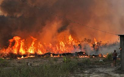 Rosną straty z powodu kataklizmów w przyrodzie