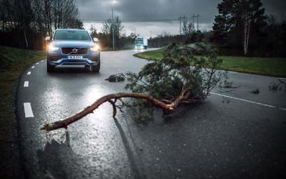 Volvo będą się ostrzegać przed niebezpieczeństwem