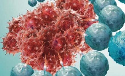 Komórki rakowe atakowane przez limfocyty