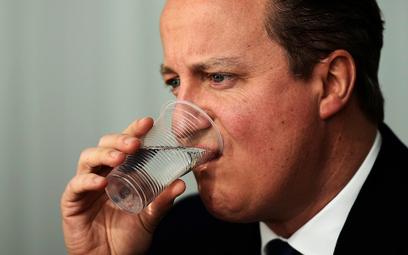 Cameron dostał propozycje od Unii