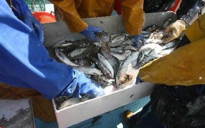 Rybołówstwo: szansa na 824 mln euro zysków
