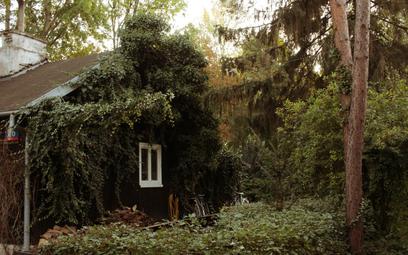 Fińskie domki łapią oddech